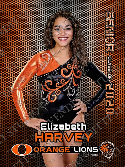 Orange Spring Sports Banners 2020